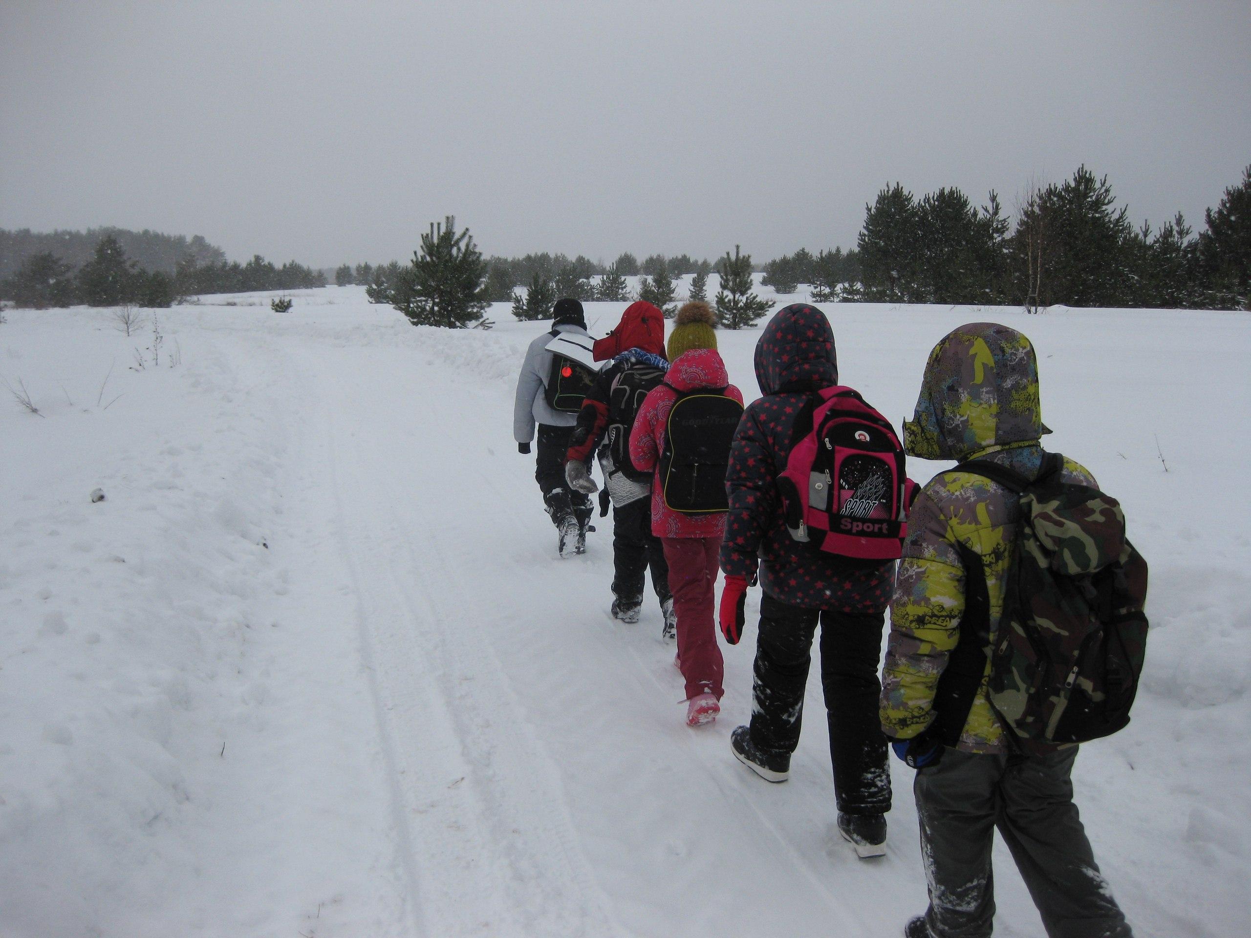 Следопыты Волоколамского отряда БПС совершили марш-бросок в лес